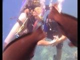 Наш медовый месяц под водой)))