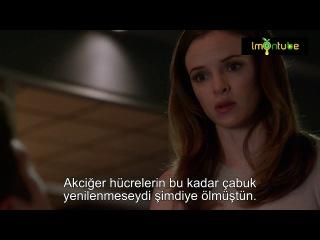 Habil 1x3 TR